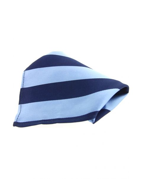 Sky Blue & Navy College Striped Silk Pocket Square